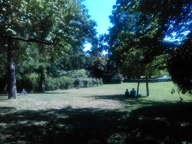 Нови Сад Дунавски парк