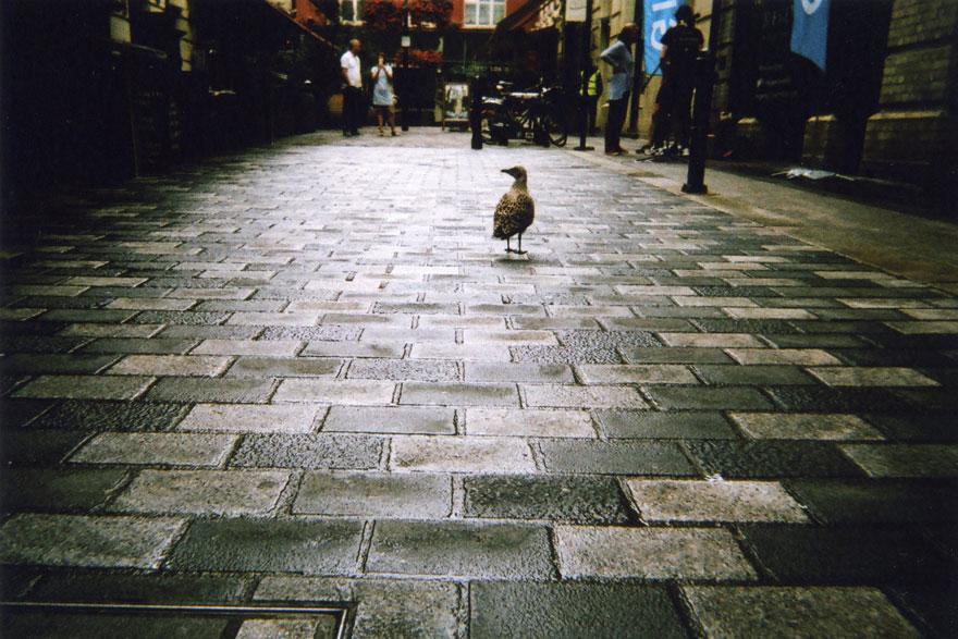 homeless-people-photography-2016-my-london-calendar-cafe-art-7