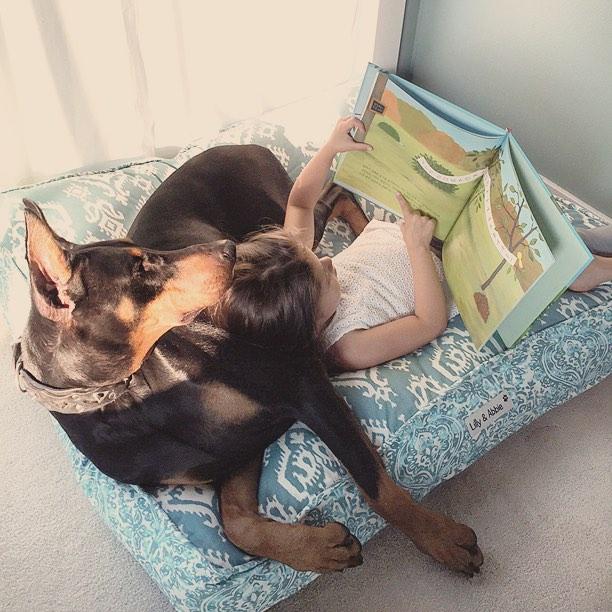 cutie-and-the-beast-dog-girl-seana-doberman-95