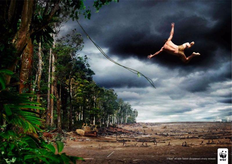 377755-900-1451984288-deforestation