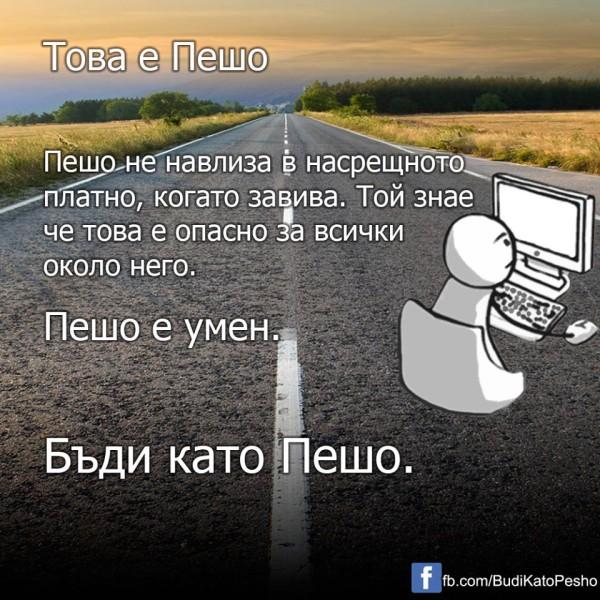 Pesho3