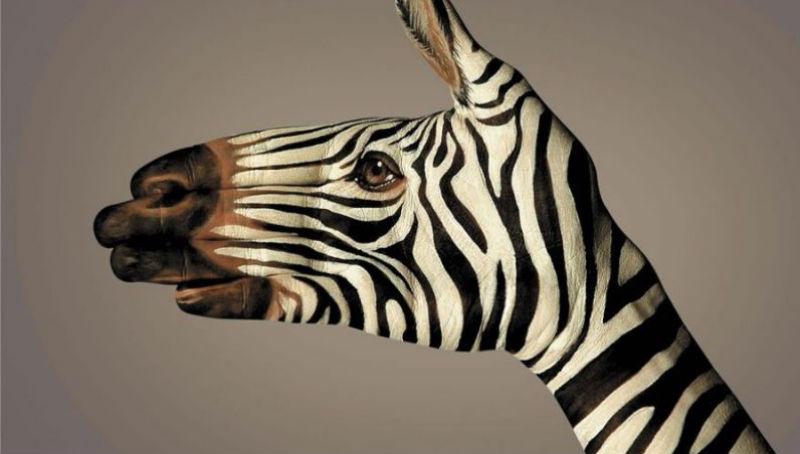 С уважение към планетата: 30 от най-въздействащите реклами за опазване на природата (снимки)