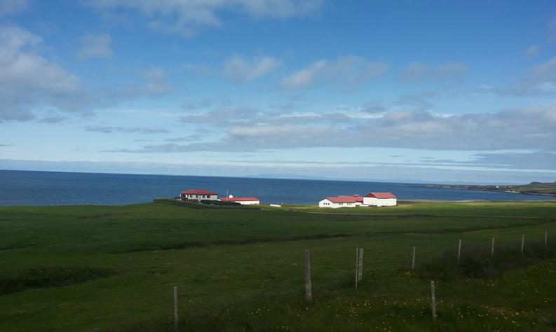 Какво научих от исландците: 5 урока от първо лице