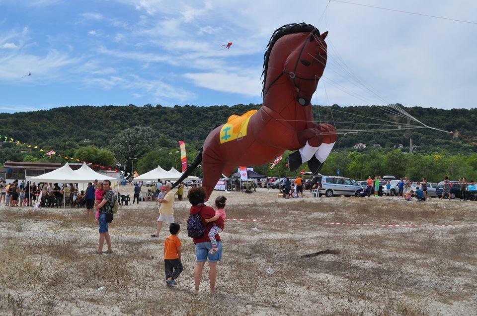 фестивал на хвърчилата 8
