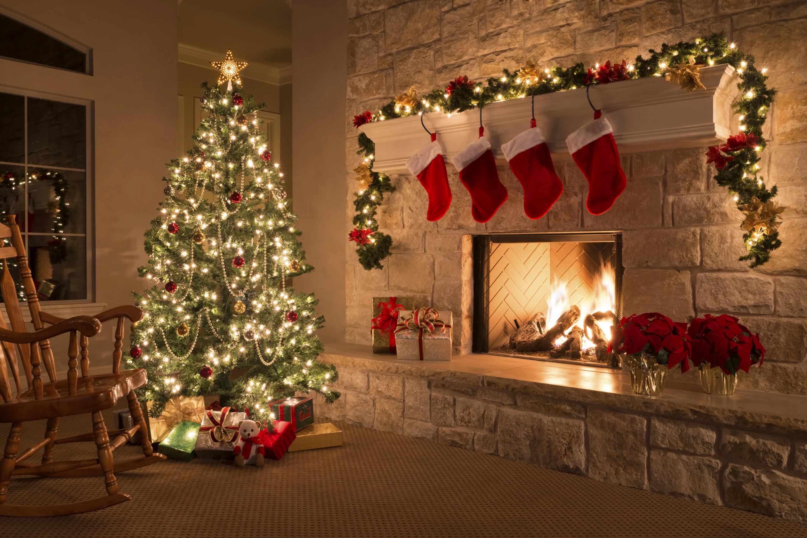 Коледен разказ: Заради лука