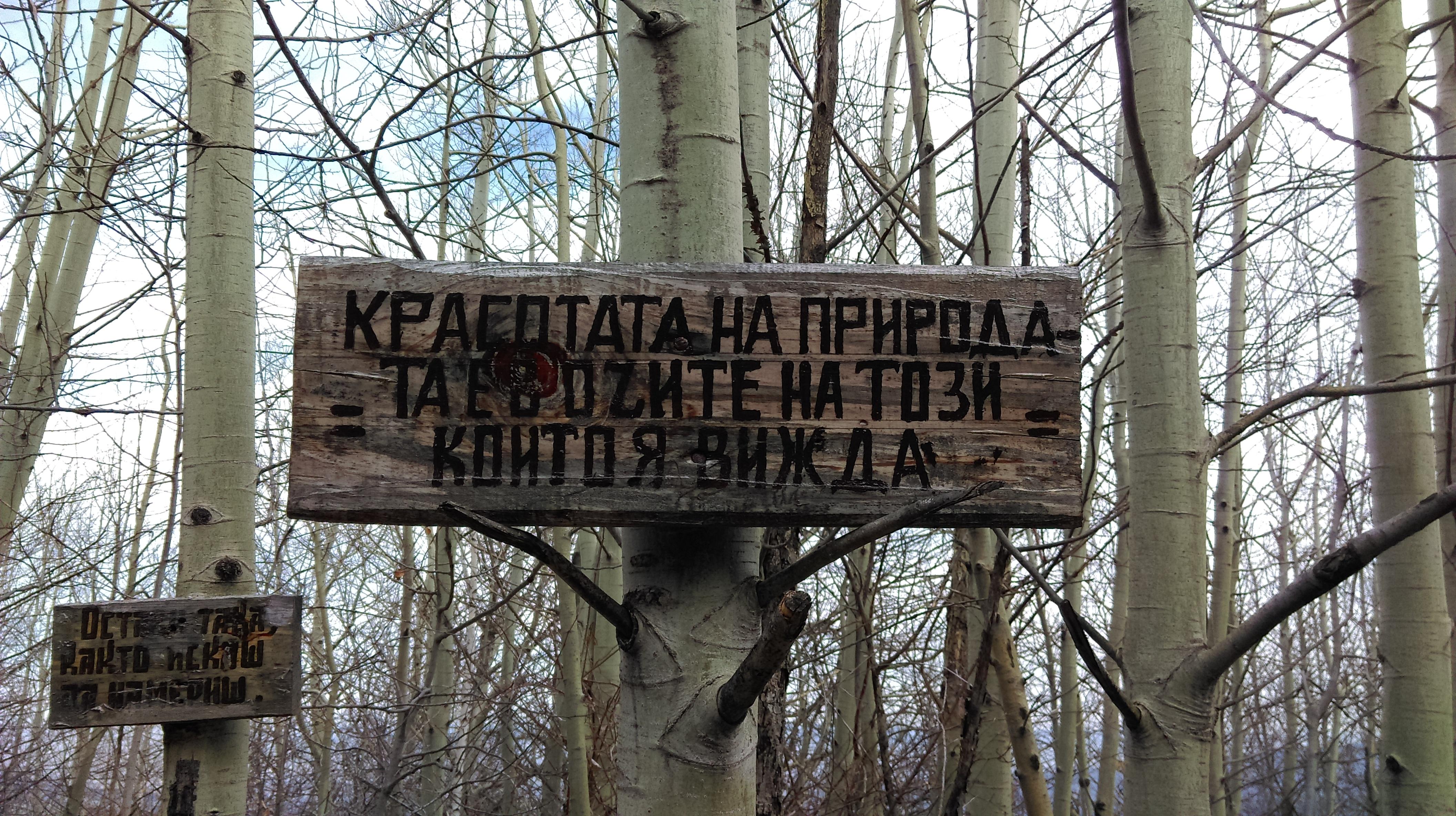 Бистрица-Железница: Панорамен поход по алеята на вдъхновението