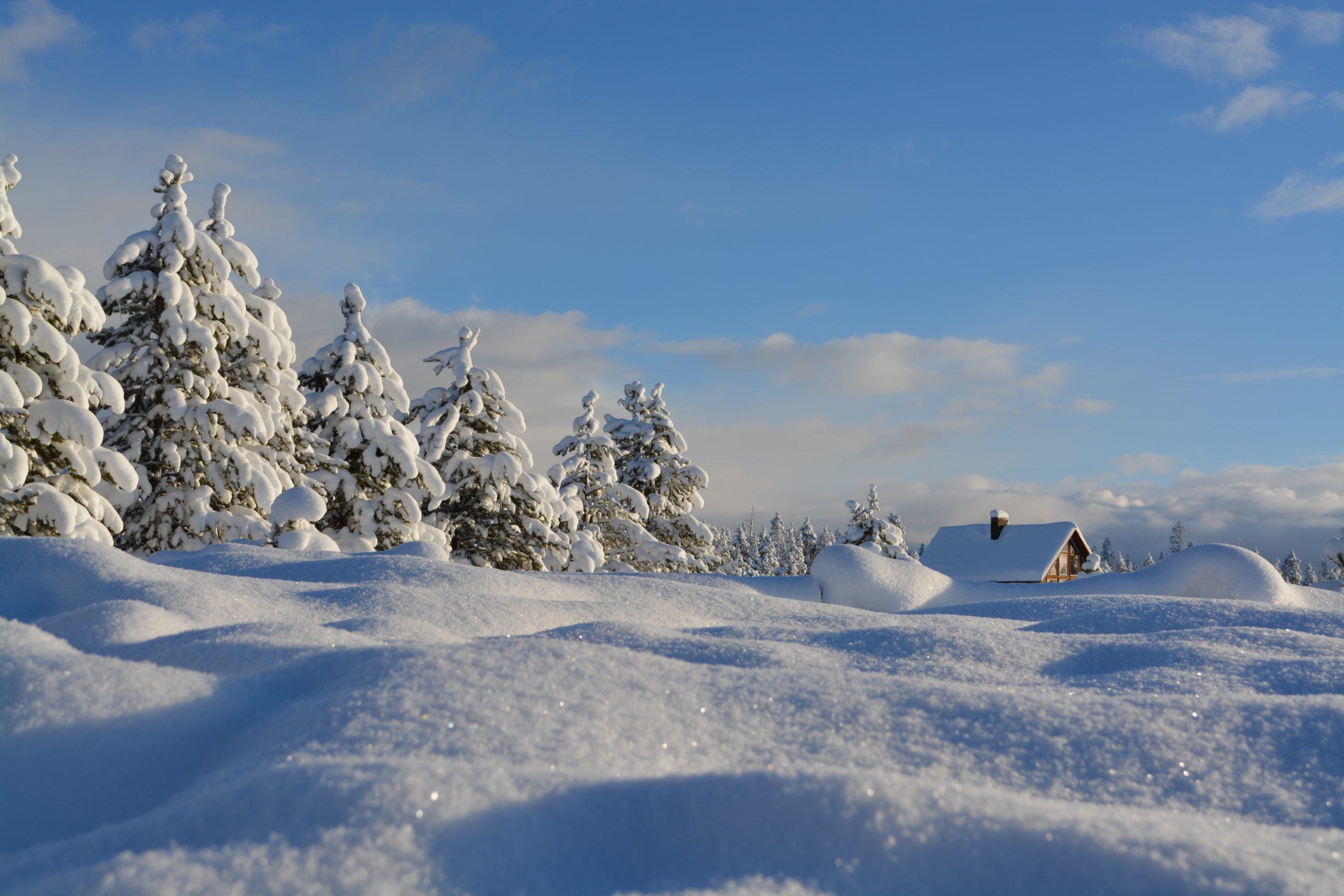 За снега и личните сезони