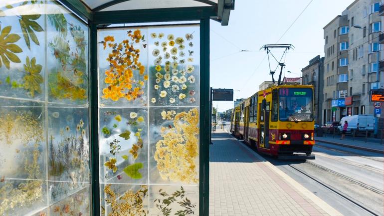 Цветно настроение от градска спирка-хербарий в Полша