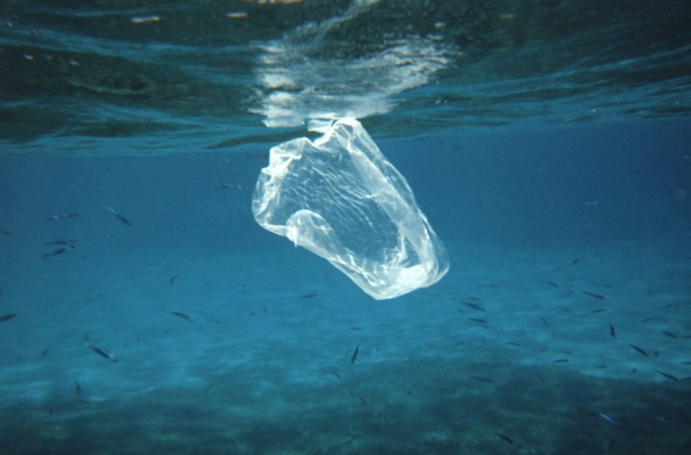 Нов опаковъчен материал се разтваря напълно в морска вода