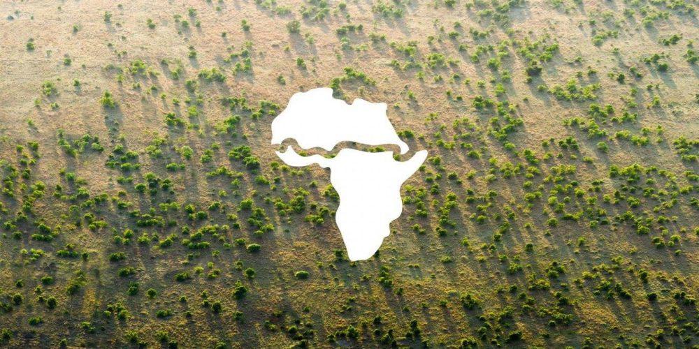 Страните в Африка садят Великата зелена стена