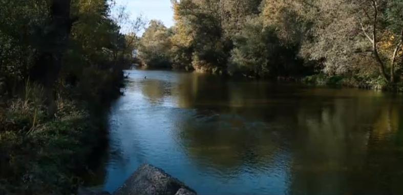 Река Въча – почистена и зарибена от доброволци